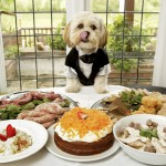 dinning with doggy