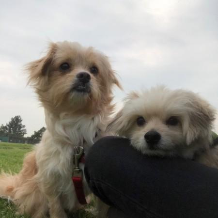 Kiwi and Keegan